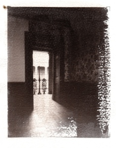 belsay brown