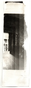 belsay test strip