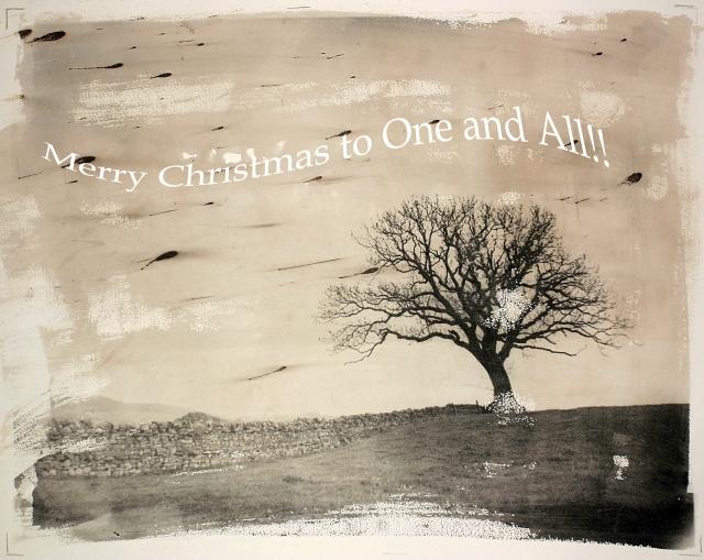 2016christmas-card